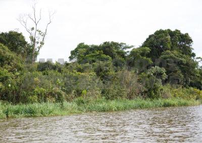 Mündung des Igarapé Tucurui in den Rio Xingu