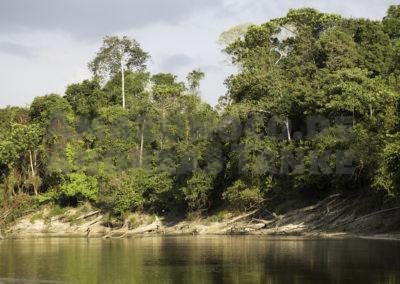 Río Itaya, Peru