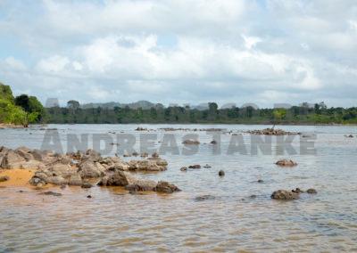 Fundort von Corydoras benattii (C 22) am Rio Xingu