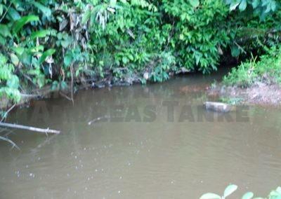 Kleiner Bach im Einzug des Marshalcreek, Suriname. Fundort von Corydoras aeneus
