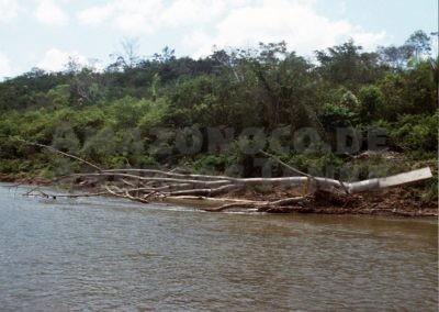 Río San Alejandro, Peru (Foto: Ingo Seidel)